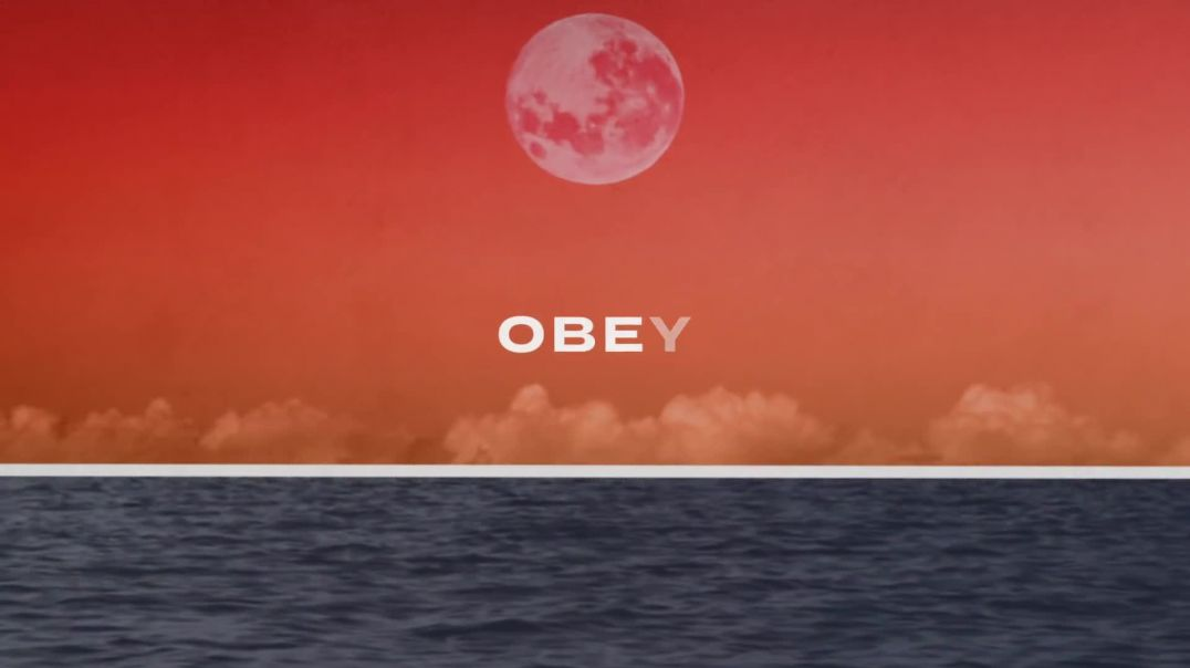 Soul Survivor (feat. Tom Smith) - Obey (Official Lyric Video)