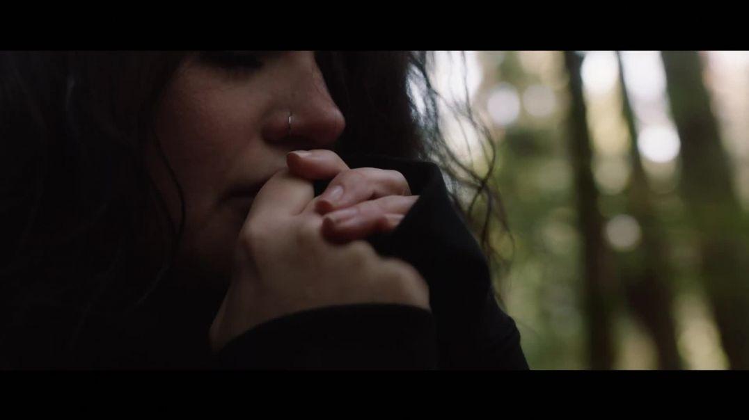Awakening  - Amanda Lindsey Cook
